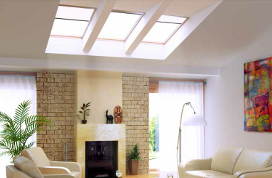 Fixed skylight FX